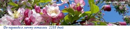 28584_lTLb.png