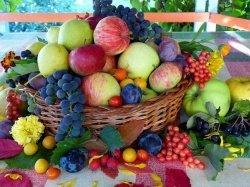 Витамины в борьбе с бесплодием