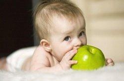 Ребенок в первый триместр беременности фото